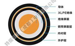 特缆电工核心电力电缆产品有哪些?