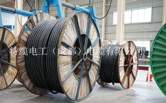 特缆电工主要生产哪些电力电缆?