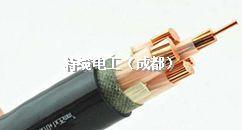 """电力电缆行业的""""非标""""诱惑,特缆电工坚决抵制"""